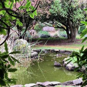 Springtime at Tasma House and Gardens, Daylesford, Victoria, Australia