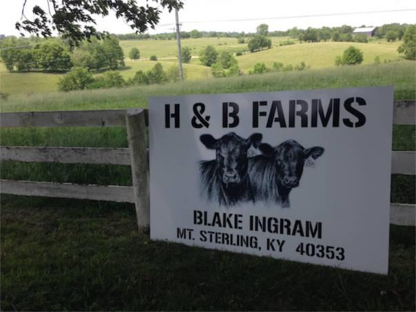 Farm_9328